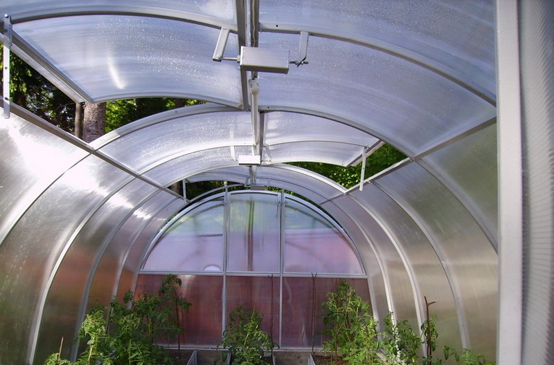 Температура имеет прямое воздействие на рост растений