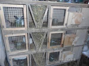 Материалы для кроличьих клеток