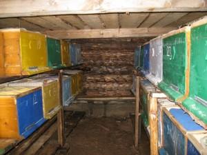 Как построить и утеплить омшаник для пчел