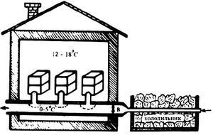 Строительство омшаника