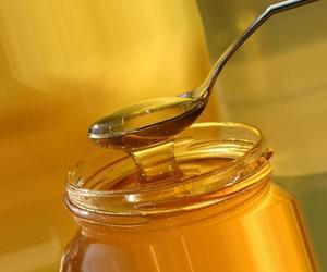 Мед – это натуральный продукт, в состав которого входит много целебных веществ