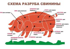 Как правильно разделывают свинью