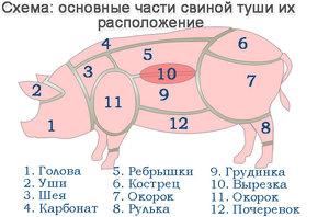 Схема разделки туши свиньи с правильными названиями мяса