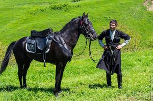 Описание кабардинской лошади