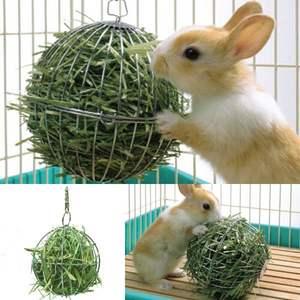 Питание кроликов в домашних условиях