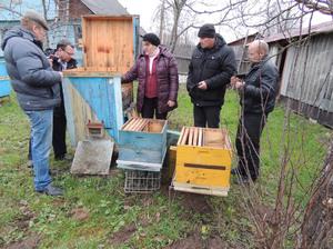 Пчеловодство по Цебро - рентабельно и просто