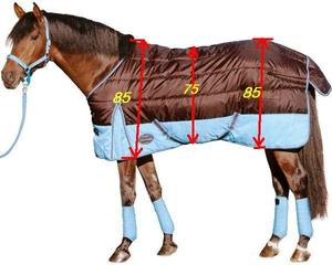 Как сшить для лошади попону своими руками