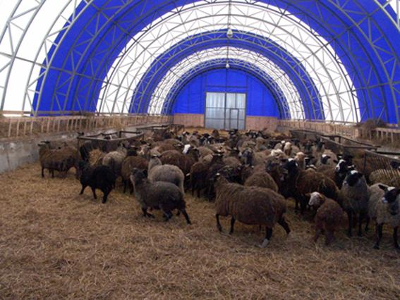способы заземления тентовый ангар для овец великая