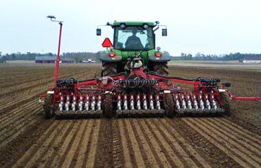 Пшеница.Высшие сорта. Особенности посева, ухода и выращивания пшеницы, предназначенной для создания хлеба